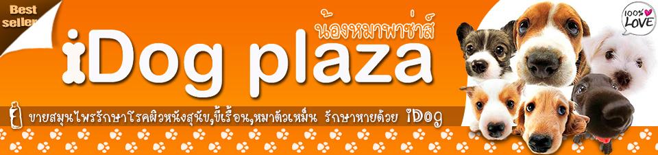 idogplaza
