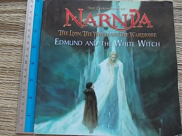 The Chronicles of Narnia: The Lion, The Witch and the Wardrobe: Edmund and the White Witch