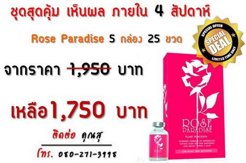 rose paradise ราคา