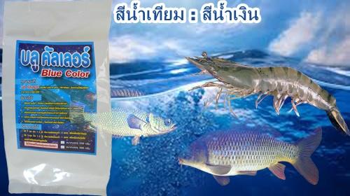 สีน้ำเทียม,สีน้ำวิทยาศาตร์,ทำสีน้ำบ่อกุ้ง,สีน้ำเทียมใช้ในบ่อกุ้ง,ทำสีน้ำเทียมบ่อปลา,เพาะลูกกุ้ง ลูกปลา,ยูเอส คัลเลอร์,เลี้ยงกุ้ง,เลี้ยงสัตว์น้ำ,เลี้ยงปลา