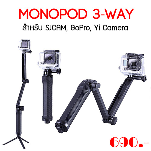 Monopod 3-Way