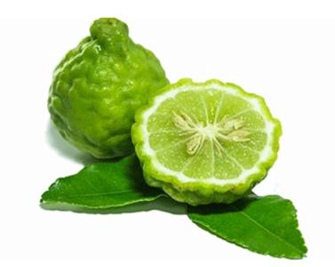 สารสกัดมะกรูด Citrus Extract 100 cc.