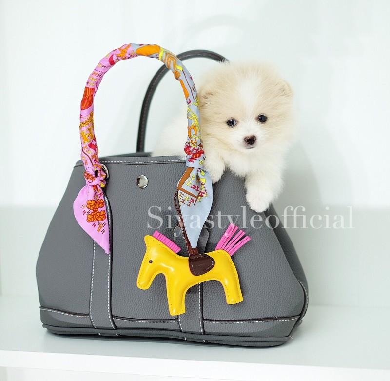 กระเป๋าสะพายแฟชั่น กระเป๋าสะพายข้างผู้หญิง Garden Bag [สีเทา]