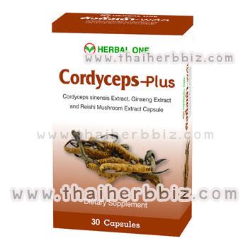 ตังถั่งเฉ้า-พลัส อ้วยอันโอสถ เฮอร์บัลวัน Cordyceps-Plus Herbal One