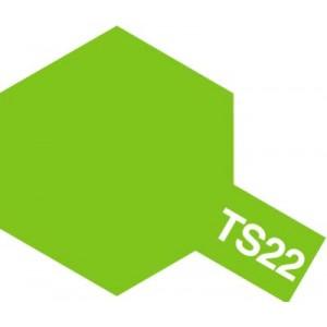 TS-22 light green