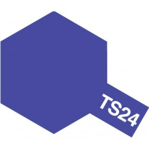 TS-24 purple