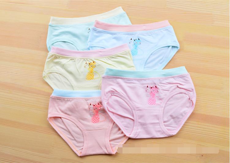 กางเกงในเด็ก คละสี แพ็ค 20 ตัว ไซส์ L อายุ 2-3 ปี