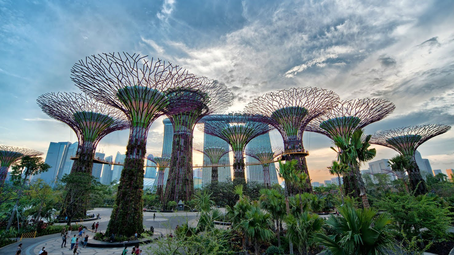 Gardens by the Bay (ผู้ใหญ่)