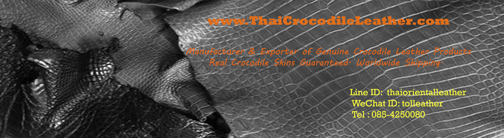Thai Crocodile Leather