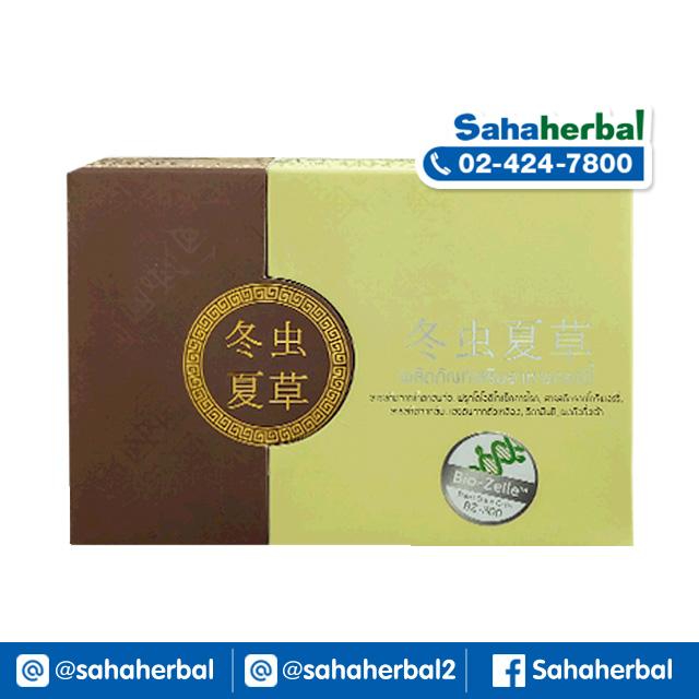 Cordy ผลิตภัณฑ์เสริมอาหาร คอร์ดี้ SALE 60-80% ฟรีของแถมทุกรายการ