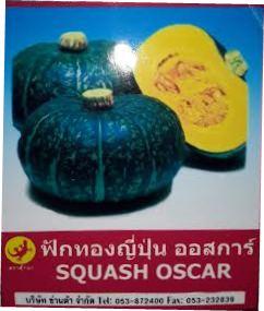 ฟักทองญี่ปุ่น Squash Oscar (2.0 กรัม)
