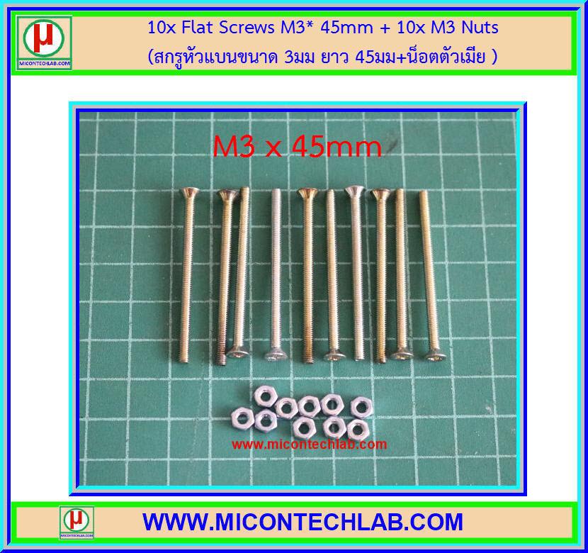 10x Flat Screws M3* 45mm + 10x M3 Nuts (สกรูหัวแบนขนาด 3มม ยาว 45มม+น็อตตัวเมีย )