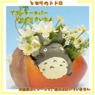 กระถางดอกไม้ My Neighbor Totoro (ลูกนัท)